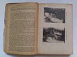 """М.Ліфшиц, А.Корхов """"Клініка внутрішніх хвороб"""". Медвидав. 1933-1935 рік. 2 тома, фото 6"""