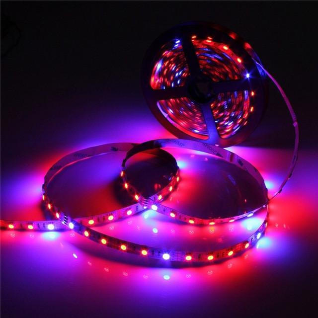 Dilux - Светодиодная фитолента SMD 5050 (60 LED/m) IP20 ( 4красных + 2синих )