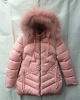 Полу-пальто детское для девочки с мехом6-10лет,пудровый цвет