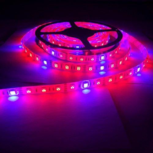 Фитолента светодиодная SMD 5050 (60 LED/m) IP65 ( 3красных + 1синий )