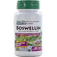 Natures Plus, Травяные активные вещества, босвелин, 300 мг, 60 растительных капсул