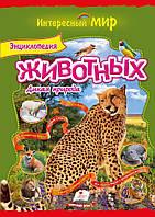 Энциклопедия животных Дикая природа     ,9786177131525