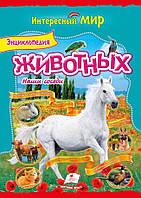 Энциклопедия животных Наши соседи     ,9786177131549