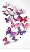 Бабочки 3D с магнитом  набор 12 шт - интерьерный  декор
