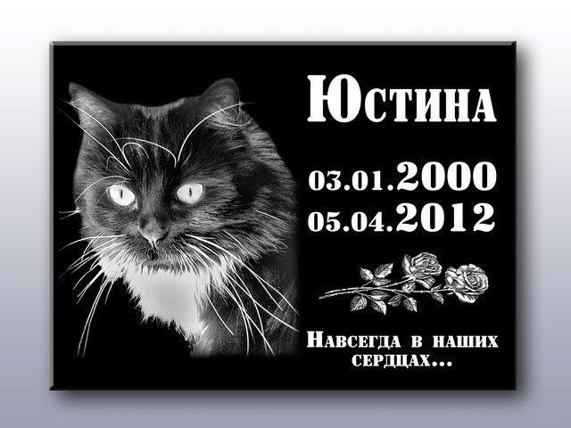 Памятные и ритуальные таблички для животных (изготовление 1 час)