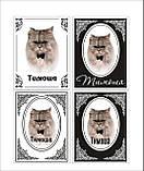 Памятные и ритуальные таблички для животных (изготовление 1 час), фото 4