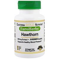 California Gold Nutrition, CGN, EuroHerbs, боярышник XT, 300 мг, 60 растительных капсул