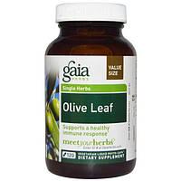 Gaia Herbs, Лист оливы, 120 жидких фито-капсул на растительной основе