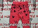 Лосины утепленные для девочек  F&D 4-12 лет, фото 4