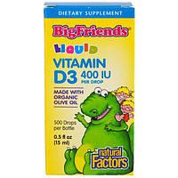 Natural Factors, Дети, лучшие друзья, жидкий, витамин D3, 400 МЕ, 0,5 жидк. унц. (15 мл)