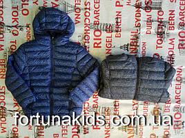 Куртки на флисе для мальчика GLASS BEAR 134-164 р.р.