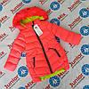 Зимние детские куртки для девочек оптом  HIKIS