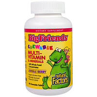 Natural Factors, Большие друзья, жевательный мультивитаминный комплекс с минералами, со вкусом ягод из джунглей, 60 жевательных таблеток