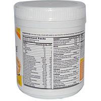 Pure Essence, LifeEssence Powder, Energizing Whole Food Multiple, 9.21 oz (261 g)