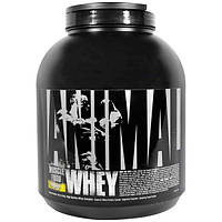 Universal Nutrition, Сыворотка Animal, питание для мышц, банановый крем, 4 фунта (1,81 кг)
