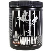 Universal Nutrition, Animal, сывороточный протеин для мышц, шоколад, (135 г)