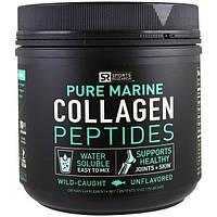 Sports Research, Взятое из природы, чистые морские коллагеновые пептиды, без запаха, 12 унций (340 г)