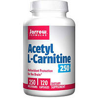 Jarrow Formulas, Ацетил L-карнитин 250, 250 мг, 120 капсул