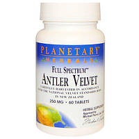 Planetary Herbals, Полный спектр, отростки оленьего рога, 250 мг, 60 таблеток