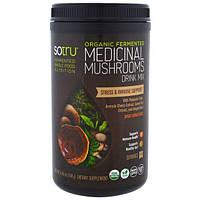 SoTru, Органический ферментированный продукт, медицинская смесь для питья с грибами, избавление от стресса и поддержка иммунитета, 8,46 унций (240 г)