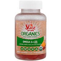 Hero Nutritional Products, Slice of Life Organics, Adult Gummy Vitamins, Omega-3 with Chia Seed, Natural Cran-Orange, 60 Gummies