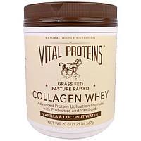 Vital Proteins, Коллаген с сывороткой, со вкусом ванили и кокосовой воды, 20 унций (567 г)