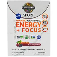 Garden of Life, Sport, Органический Белок на Органической Растительной Основе для Повышения Энергии и Концентрации Перед Тренировкой, Ежевика и Вишня,