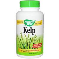 Natures Way, Ламинария, 600 мг, 180 вегетарианских капсул