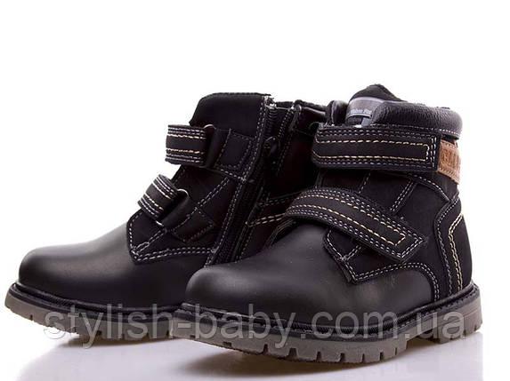 795893b3949cb7 Детские зимние ботинки оптом. Детская зимняя обувь бренда Clibee для  мальчиков (рр. с 27 по 32)