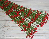Ветка  с ягодками красная