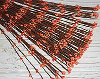 Ветка  с ягодками персиков., фото 1