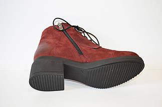 Демисезонные бордовые ботинки Donna Ricco, фото 3