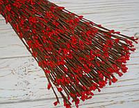 Ветка  с ягодками красного цвета