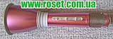 Bluetooth караоке мікрофон з динаміком TUXUN-K068, фото 2