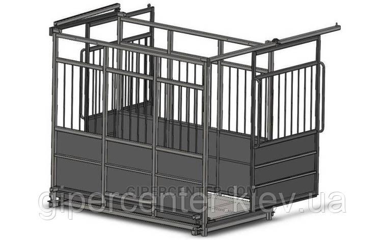 Весы для взвешивания скота с раздвижными дверьми 4BDU-1500X-Р, НПВ: 1500кг, 1250х1500х1600мм ПРЕМИУМ, фото 2