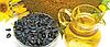 Семена подсолнечника СИ Есперто (Syngenta)