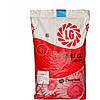 Семена подсолнечника ЛГ 5663 КЛ (Лимагрейн). Под Евро-лайтинг