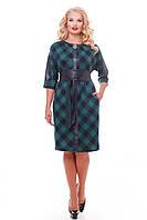 Красивое платье с поясом Кэтлин зеленое клетка