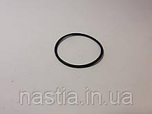 200991 Гумовий ущільнювач у лічильник води(турбіну)