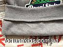 Трикотажные толстовки с начесом для мальчиков SINCERE 4-12 р.р., фото 5