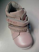 Ботінки осінь шкіра дівч. Калорія AD2134-021F, 24 рожевий (21-26р)