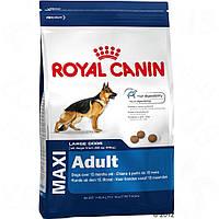 Royal Сanin Maxi Adult (Роял Канин) сухой корм для собак