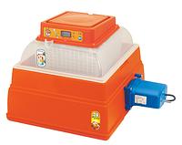 Novital Covatutto 24 Digitale Automatica инкубатор бытовой автоматический цифровой для яиц