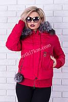 Короткая женская зимняя куртка Damader №1739, фото 1