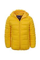 Курточка утепленная  для девочек Glo-Story оптом, 92/98-128 рр.