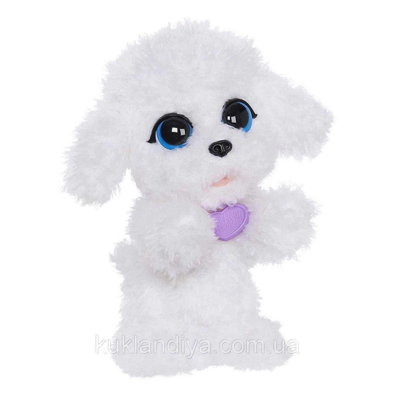Интерактивный щенок FurReal Мой прыгающий пудель