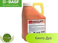 Протравитель Кинто  Дуо BASF
