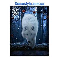 Алмазная вышивка Волк в ночном лесу