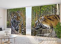 """Фото Шторы в зал """"Преданность тигров"""" 2,7м*5,0м (2 половинки по 2,5м), тесьма"""