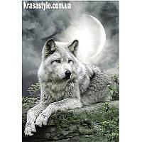 Алмазная вышивка Волк под луной